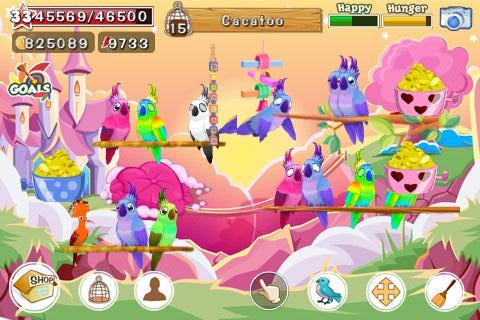 Bird Land Paradise: Pet Shop Game, Play with Bird for ...  Pet Bird Games