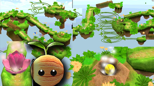 Balance Ball 3D-Rolling Seed