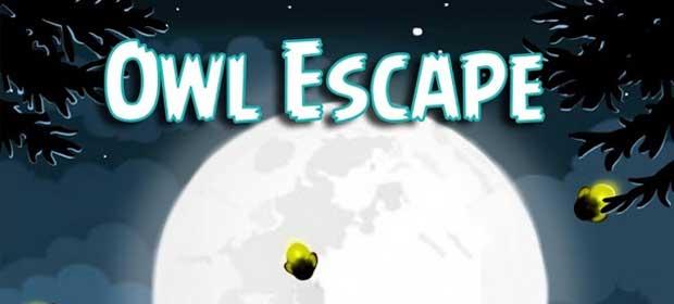 Poor Owl Escape Arcade