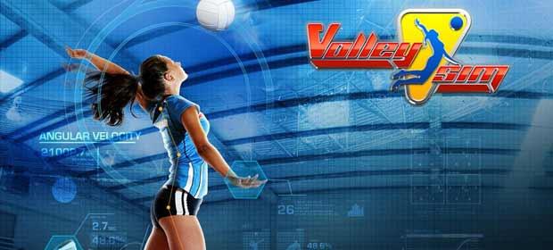 VolleySim