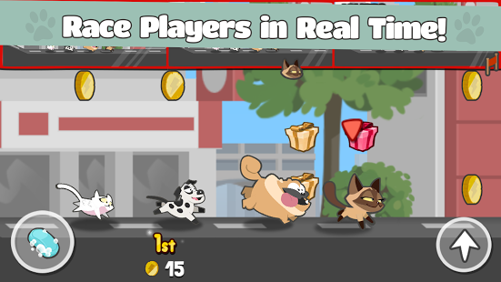 Pets Race - Fun Multiplayer Racing with Friends